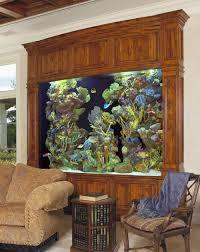 spectacular aquariums personalizing interior design with colorful