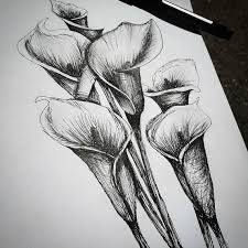 calla lilly flower pen drawing by turinocreations on etsy art