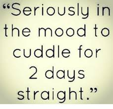 Cuddle Meme - seriously in the mood to cuddle for 2 days straight meme on