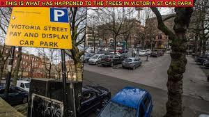 legal challenge over chopped down trees in city centre car park