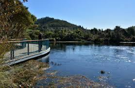 te waikoropupū springs places to go in nelson tasman