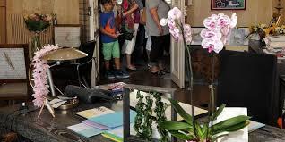 le bureau pau le bureau de la maire attire d autres regards sud ouest fr