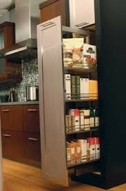 Pull Out Kitchen Shelves by Narrow Pull Out Spice Rack Kitchen Inspiration Pinterest