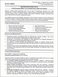 Excellent Resume Sample by Sample Writing Guide Astounding Inspiration Business Resume 7