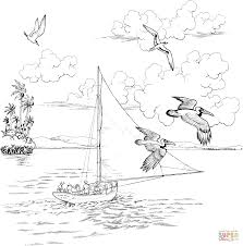 two pelicans fly over the sailboat coloring page free printable