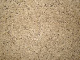 carpet and flooring store mesa az