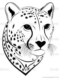 cheetah coloring page getcoloringpages com