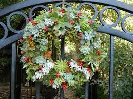 51 best succulent arrangements images on pinterest succulent
