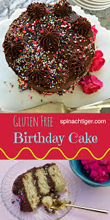 gluten free yellow cake with chocolate buttercream frosting