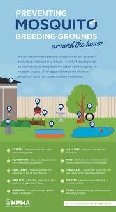 Eliminate Mosquitoes In Backyard by How To Prevent Mosquito Breeding Grounds Around Your House And