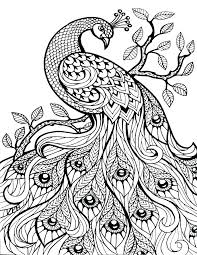 printable coloring pages for adults geometric coloring pages adults free usedauto club