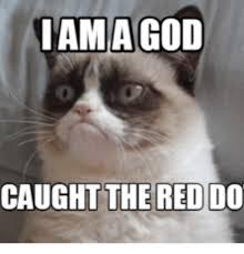 Mãªme In English - 25 best memes about i am a god meme i am a god memes