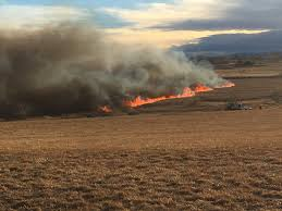 Wildfire Honey by Cigarette Might Have Sparked Fort Collins Wildfire Fox31 Denver