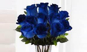 blue roses delivery six blue roses with chocolates groupon goods