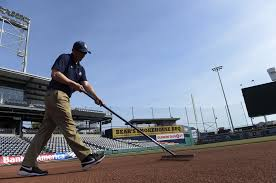 after frustrating wait yard goats u0027 groundskeeper can finally tell