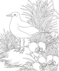415 best birds images on pinterest drawings machine embroidery