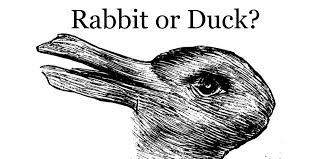 u2013 rabbit duck results assess