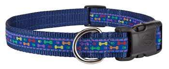 navy blue ribbon buy deluxe rainbow paws and bones woven ribbon on navy blue dog
