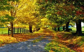 Beautiful Images Beautiful Autumn Wallpapers Wallpaperpulse