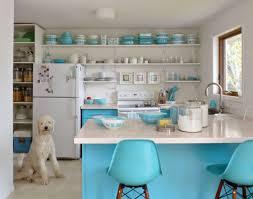 Open Shelves Kitchen Design Ideas Emejing Open Shelves Kitchen Design Ideas Gallery Interior