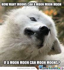 Moon Moon Meme - 174 best moon moon images on pinterest funny photos funny pics