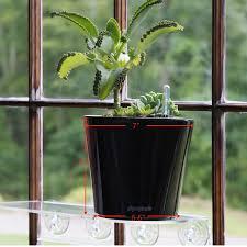 amazon com aquaphoric self watering planter 7