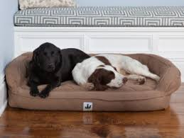 dog beds 3 dog pet supply