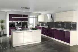 cuisine des aubergines couleur aubergine et à quoi l associer dans chaque pièce