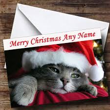 cute cat wearing xmas hat personalised christmas card the card zoo