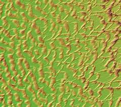 Upenn Campus Map Penn Researchers Uncover A Mechanism To Explain Dune Field