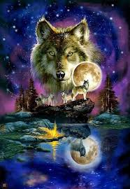 1075 best wolves and indians images on
