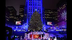 the rockefeller center tree has arrived in nyc story
