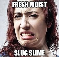 I Am Moist Meme - th id oip 7pqmfbdmggt2v1h u inkgaaaa