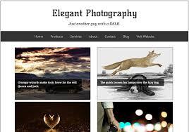 elegant photography blogger template 2014 free download