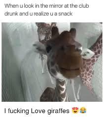 Drunk Giraffe Meme - 25 best memes about looking in the mirror looking in the