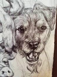 famous animal drawings pencil art drawing