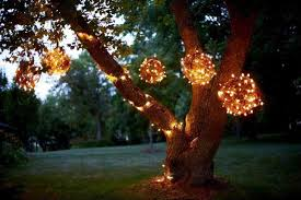 outdoor lights ideas for trees gravine lights