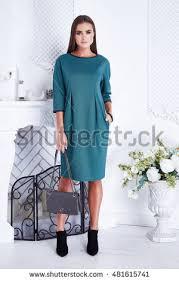 beautiful brunette woman wear elegant stock photo 491118400