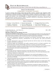 resume summary exles resume sle it executive fresh resume sle executive summary