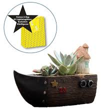 lightningstore cute brown grey gray ship boat house succulent plants p