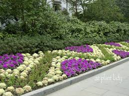 colorful and edible ornamental for your garden birds and blooms