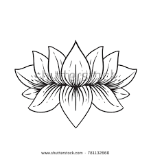 lotus flower outline stock images royalty free images u0026 vectors