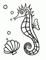 sea horse coloring page intended for your own home cool coloring