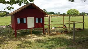 house chicken coop backyard chickens