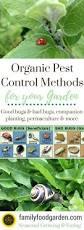 organic pest control methods