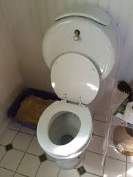 we provide same day service for bathroom plumbing in naperville