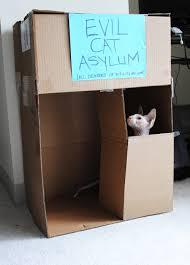 of the fountain evil cat asylum