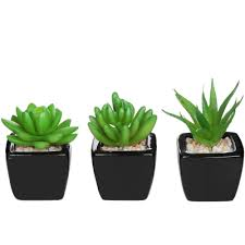 Artificial Plants Home Decor Set Of 3 Modern Home Decor Mini Succulent Artificial Plants