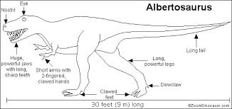 fun albertosaurus similar free coloring pages
