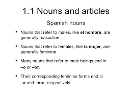 1 1 nouns and articles